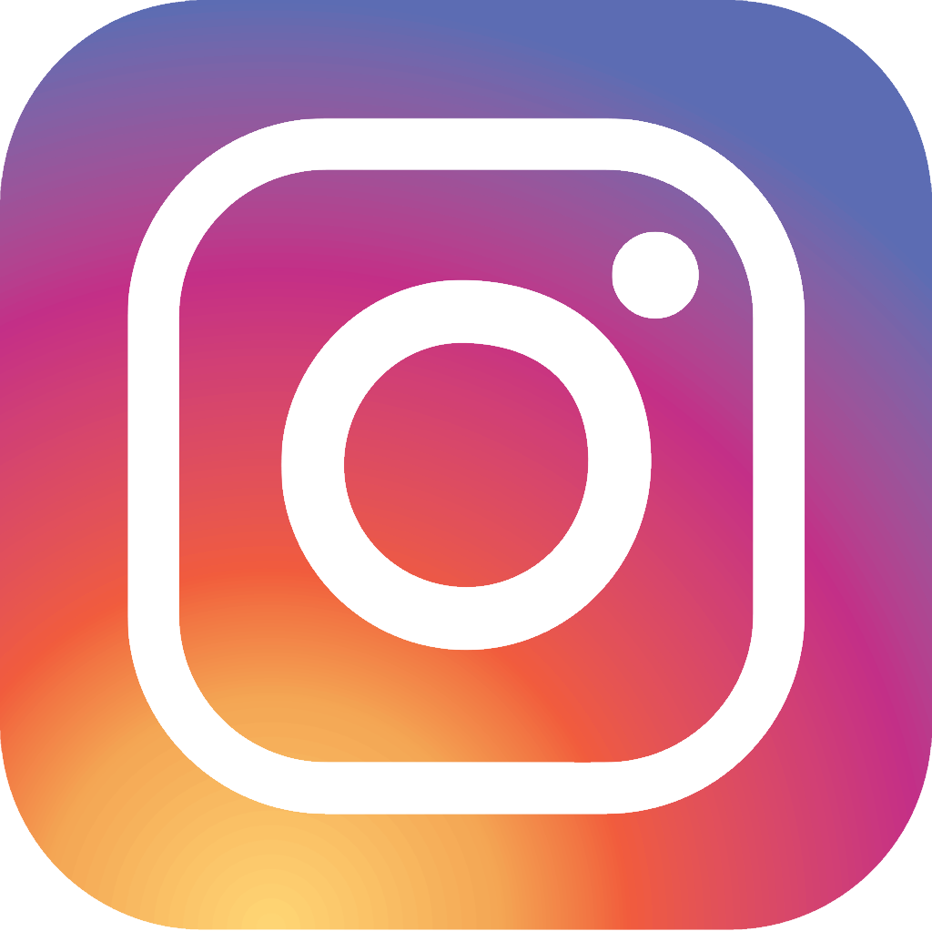 instagram vector